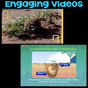 Watch Life of a Dung Beetle & Stages of Plant Life Cycle - Science Station