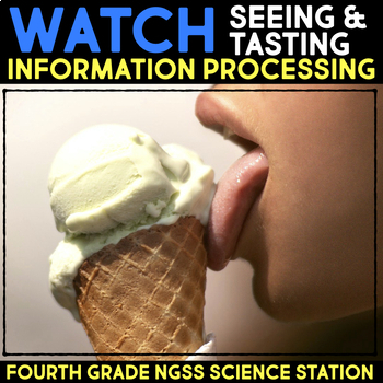 Watch a Video about Seeing and Tasting - Information Processing