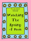 Watching The Spring: A Poem