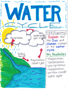 5th Grade Water Cycle