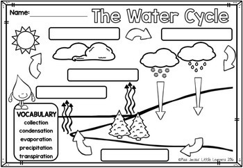 Water Cycle: A non-fiction mini unit by Miss Jacobs ...