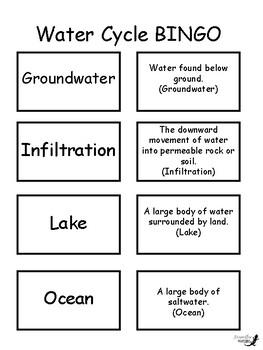 Water Cycle BINGO!
