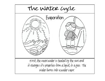 Water Cycle Book and Puzzle