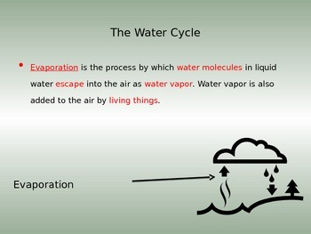 Water Cycle CLOZE NOTES Key