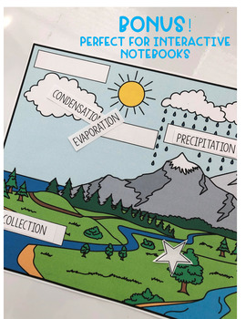 Water Cycle Card Sort Activity/Game - Earth Science