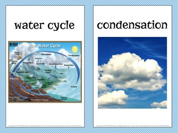 Water Cycle Vocabulary Trading Cards and Word Wall Posters