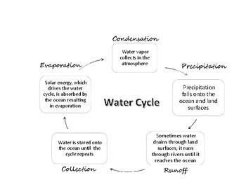 Water Cycle Chart / El Ciclo del Agua Diagrama