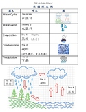 Water Cycle Chinese vocabulary 水循环