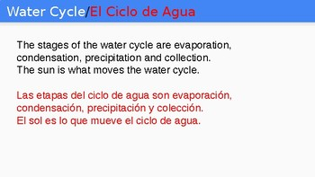 Water Cycle/Ciclo de Agua