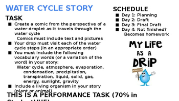 Water Cycle Comic Assessment