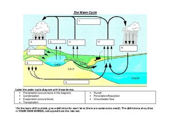 Water Cycle Comic or Diagram