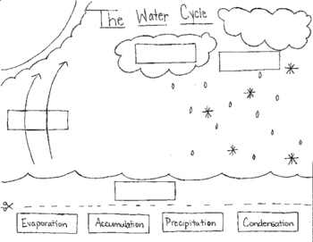 Water Cycle Cut and Paste
