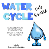 Water Cycle Cut and Paste Activity