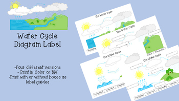 Water Cycle Labeled Diagram