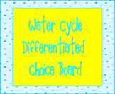Water Cycle Differentiated Choice Board