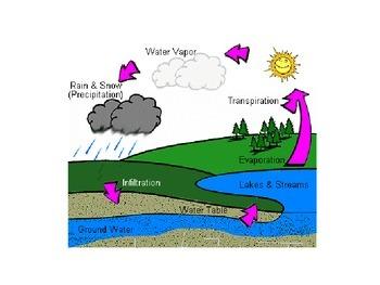 Water Cycle ESL/Bilingual Powerpoint
