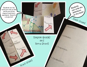 Water Cycle Foldable - Vocabulary Terms and Diagram