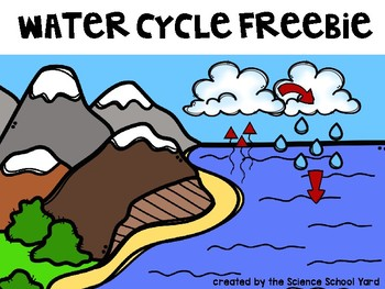 Water Cycle Freebie