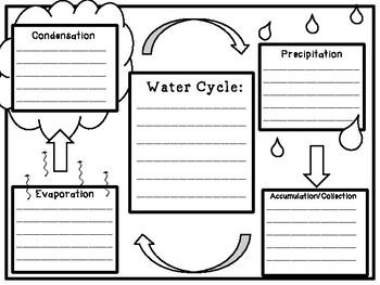Water Cycle Fun!!!