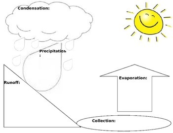 Water Cycle Graphic Organizer FREEBIE