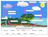 Water Cycle Graphic Organizer Worksheet