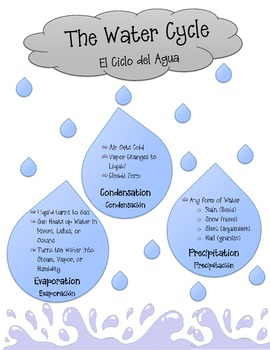 Water Cycle Handout (ESL)