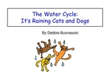Water Cycle:  It's Raining Cats and Dogs