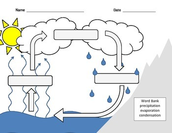 Water Cycle - Labeling