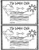 Water Cycle Mini Book
