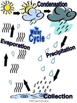 Water Cycle Mini Poster