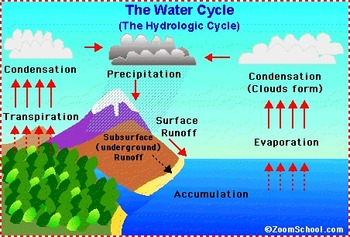 Water Cycle Podcast