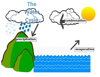 Water cycle poster by kindkinders teachers pay teachers water cycle poster ccuart Gallery