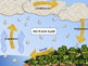 Water Cycle Poster, Activities and Booklet with Printables