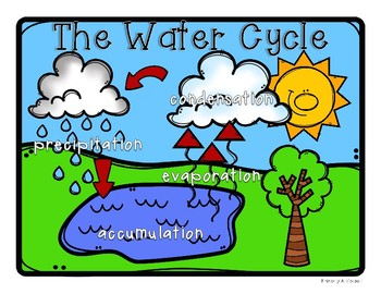 Water Cycle: Poster / Classroom Display and Practice Worksheets