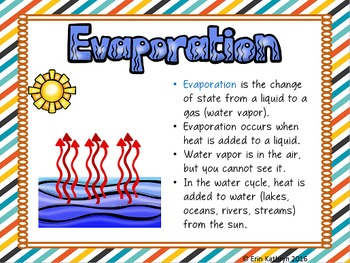 Water Cycle PowerPoint and Notes Set