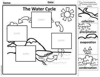 Water Cycle Label - Puzzle Parts & Labeling Activity
