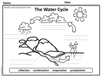 Water Cycle Label - Puzzle Parts & Labeling Activity by ...
