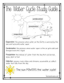 Water Cycle Quiz and Study Guide