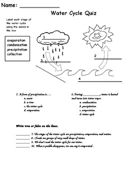 water cycle essay question Several people have asked me for the full essay for this question, so here it is the diagram below shows the water cycle, which is the continuous movement of water.