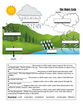 Water Cycle Quiz (Graphic Fill In)