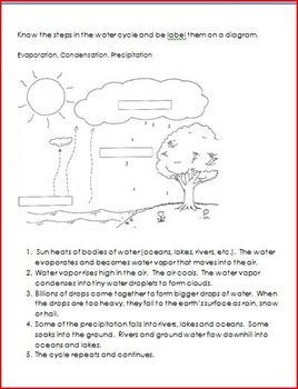 Water Cycle Quizzes and Study Guide