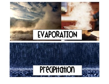 """Water Cycle """"Read the Room"""" and Pocket Chart Sort"""