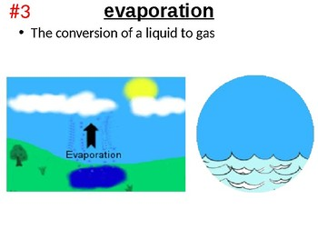 Water Cycle, Rock Cycle & Carbon Cycle Essential Terms & Vocabulary PowerPoint