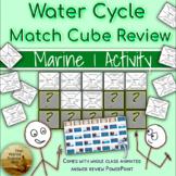 Water Cycle & Salinity Collaborative Match Cube Review w/Class Key & Summarizing