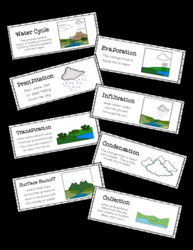 Water Cycle: Science Vocabulary Word Wall