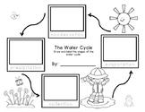 Water Cycle Sequencing Freebie grades K-2