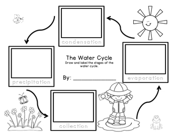 Water Cycle Sequencing Freebie grades K-2 by First Grade First Rate