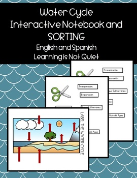 Water Cycle Simple Interactive Notebook (Spanish, English, Differentiated,  SPED)