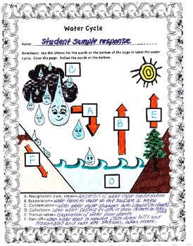 Water Cycle Simplified