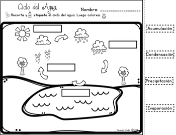 Water Cycle (Spanish). Ciclo del Agua
